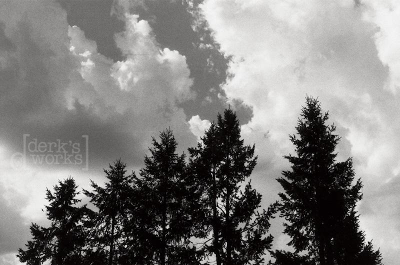 ColumbusPhotographer-around town-FILM20130125-005