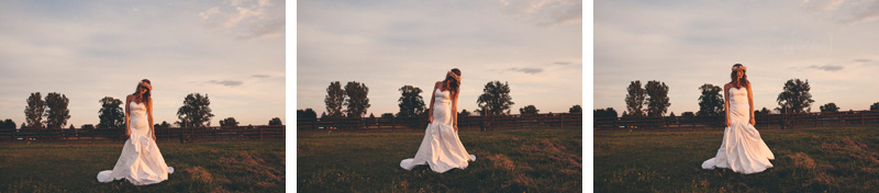 ColumbusWeddingPhotography20130821_194