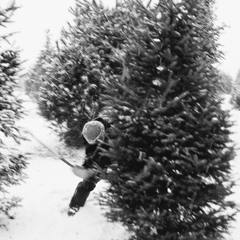 Derks Works - Christmas Tree Chopping Photography20131209-166