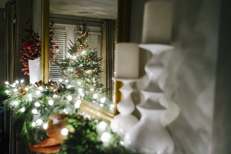 DerksWorksPhotography2014 christmas tree_001