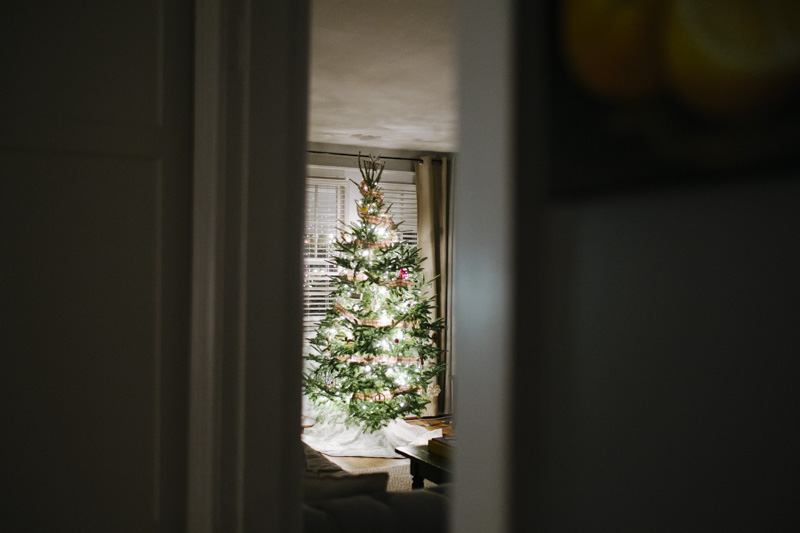 DerksWorksPhotography2014 christmas tree_017