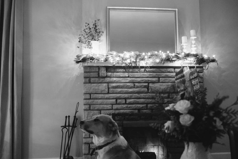 DerksWorksPhotography2014 christmas tree_018