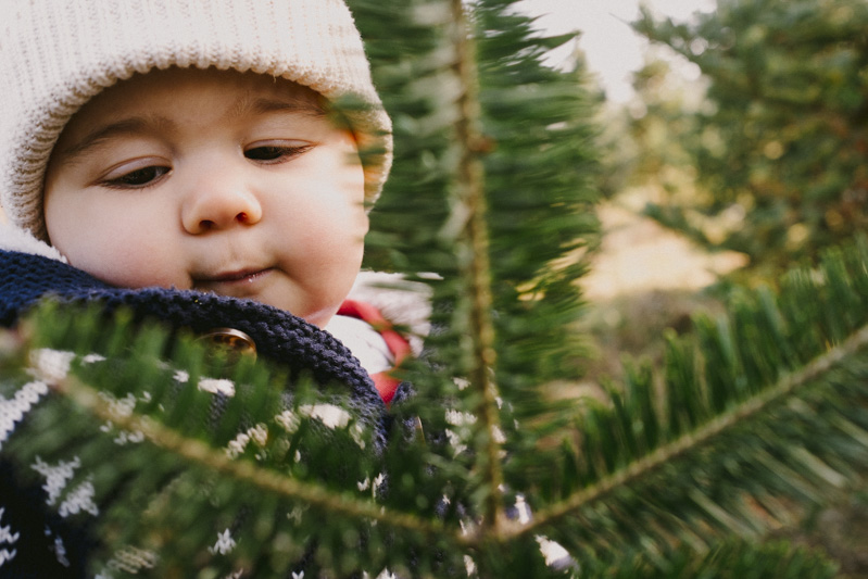 Derks Works Photography 2015 Happiest Christmas Tree_11