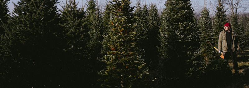 Derks Works Photography 2015 Happiest Christmas Tree_22