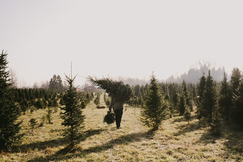 Derks Works Photography 2015 Happiest Christmas Tree_25