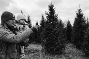 View More: http://derksworks.pass.us/2016-1201-tree-choppin