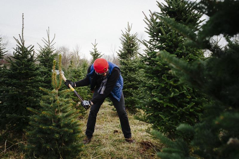 DerksWorksPhotography2014 christmas tree_011
