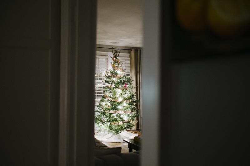 DerksWorksPhotography2014 christmas tree_017